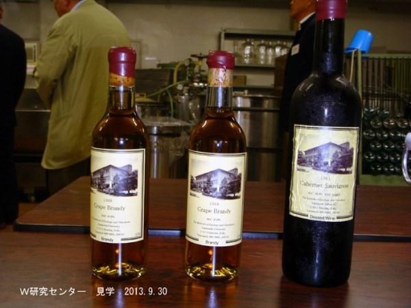 2013年度ワイン同好会(YW会)活動報告